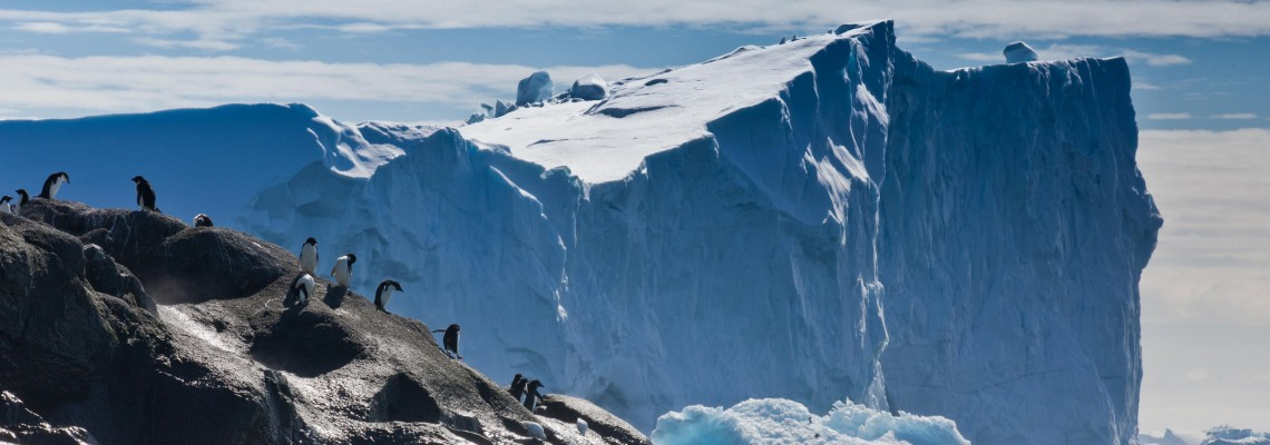 news_antarctic_site